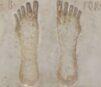 Roman Footprints